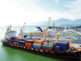 Vietnam eager to develop Lien Chieu deep seaport
